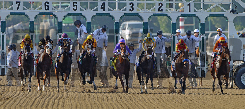 Start of the Juvenile Fillies<br /> © 2012 Rick Samuels/The Blood-Horse