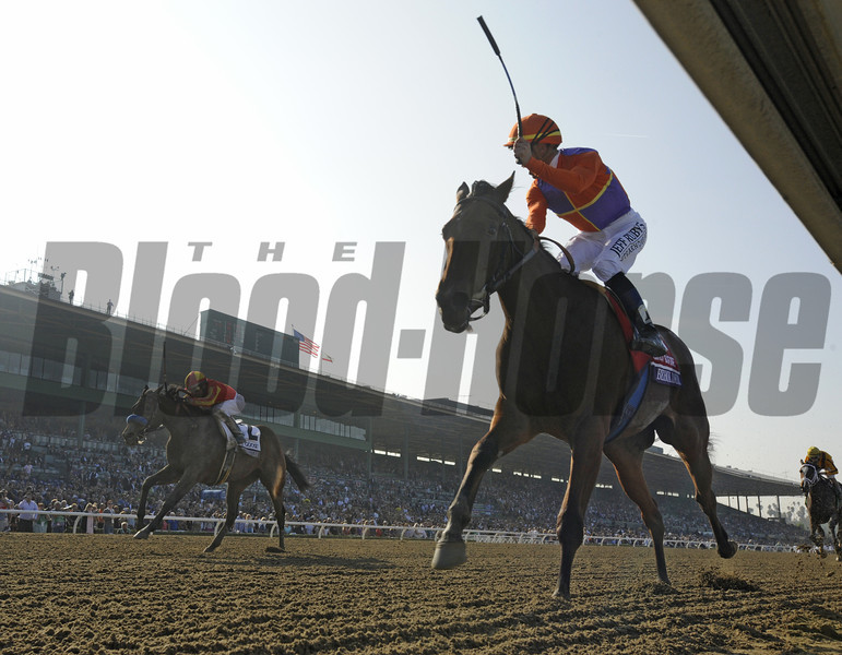 Beholder, <br /> Photo by Skip Dickstein