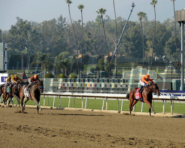 Caption: Beholder with Garrett Gomez up wins the Grey Goose Breeders' Cup Juvenile Fillies. Executiveprivelege races in second, left<br /> Breeders' Cup races at Santa Anita near Arcadia, California, on Nov. 2, 2012.<br /> BCRACES2012                                          image17<br /> Photo by Anne M. Eberhardt