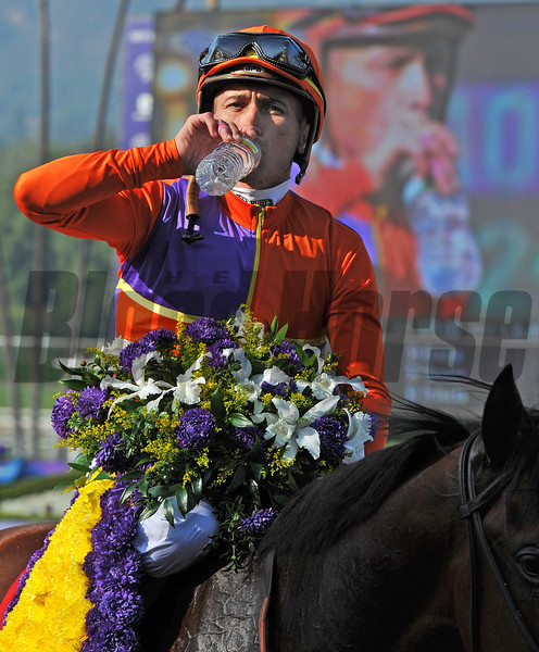 Breeders Cup Juvenile Fillies winning rider, Garrett Gomez...<br /> © 2012 Rick Samuels/The Blood-Horse