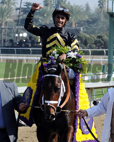 Hightail wins the 2012 Breeders' Cup Juvenile Sprint.<br /> Photo by Dave Harmon