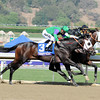 Hightail wins the 2012 Breeders' Cup Juvenile Sprint over Merit Man (outside).<br /> Photo by Dave Harmon