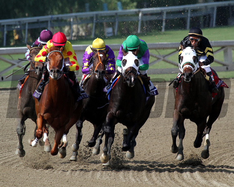 The field for the Breeders' Cup Juvenile Sprint come off the final turn at Santa Anita Park on November 2, 2012. Hightail w/Rajiv Maragh up (Black Silks) beat Merit Man w/Patrick Valenzuela up (Green Silks) and Sweet Shirley Mae w/Joel Rosario up (Yellow Silks).<br /> Photo by Chad Harmon