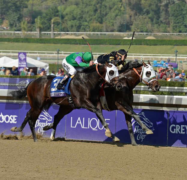 Caption: Hightail (inside) with Rajiv Maragh wins the Juvenile Sprint. Merit Man in second<br /> Breeders' Cup races at Santa Anita near Arcadia, California, on Nov. 2, 2012.<br /> BCRACES2012                                          image638<br /> Photo by Anne M. Eberhardt