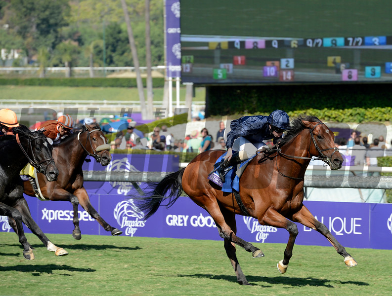 Caption: George Vancouver with Ryan Moore wins the Juvenile Turf<br /> Breeders' Cup races at Santa Anita near Arcadia, California, on Nov. 3, 2012.<br /> BCRACES2012         JUVTurf   image537<br /> Photo by Anne M. Eberhardt
