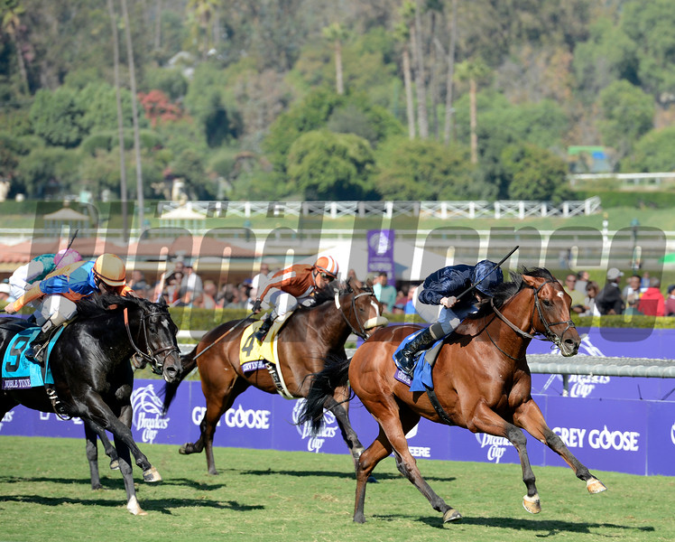 Caption: George Vancouver with Ryan Moore wins the Juvenile Turf<br /> Breeders' Cup races at Santa Anita near Arcadia, California, on Nov. 3, 2012.<br /> BCRACES2012         JUVTurf   image533<br /> Photo by Anne M. Eberhardt