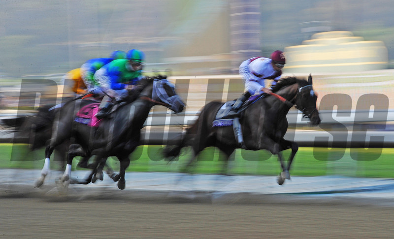 Start of the Breeders Cup Ladies Classic...<br /> Royal Delta has the lead...<br /> © 2012 Rick Samuels/The Blood-Horse