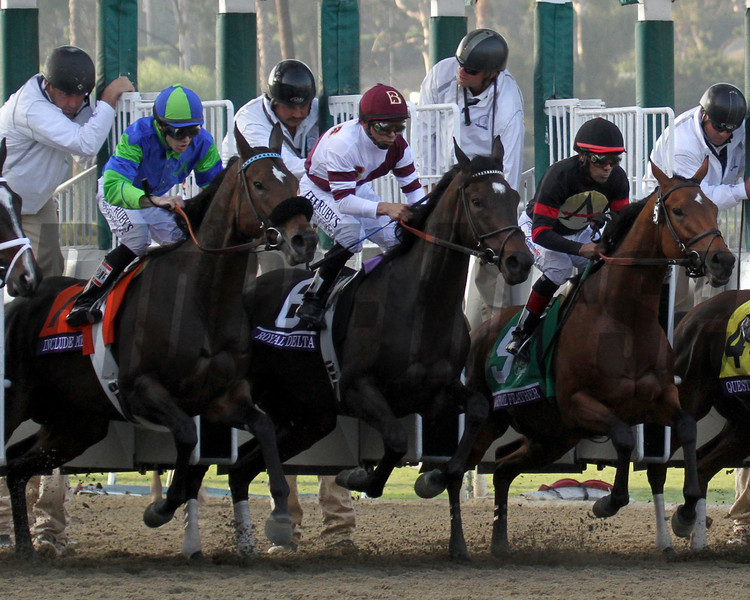 Royal Delta w/Mike Smith up break from the gate and go on to win the Ladies' Classic at Santa Anita Park on November 2, 2012.<br /> Photo by Chad Harmon