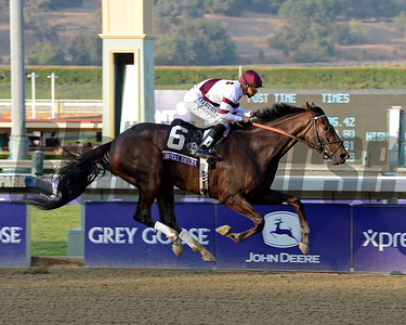 Caption: Royal Delta with Mike Smith wins the Ladies Classic.  Breeders' Cup races at Santa Anita near Arcadia, California, on Nov. 2, 2012. BCRACES2012          Ladies Classic1    image312 Photo by Anne M. Eberhardt