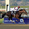 Caption: Royal Delta with Mike Smith wins the Ladies Classic. <br /> Breeders' Cup races at Santa Anita near Arcadia, California, on Nov. 2, 2012.<br /> BCRACES2012          Ladies Classic1    image312<br /> Photo by Anne M. Eberhardt
