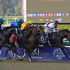 Caption: first time by: Royal Delta with Mike Smith wins the Ladies Classic. <br /> Breeders' Cup races at Santa Anita near Arcadia, California, on Nov. 2, 2012.<br /> BCRACES2012          Ladies Classic1    image268<br /> Photo by Anne M. Eberhardt