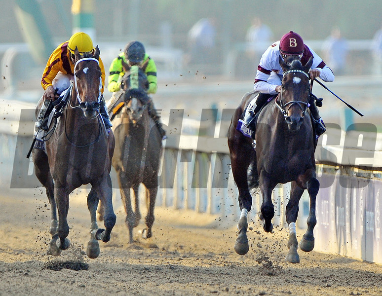 Royal Delta (rail) Mike Smith up, holds off My Miss Aurelia, to win the Breeders Cup Ladies' Classic at Santa Anita...