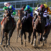 The field for the Breeders' Cup Ladies Classic turn for home at Santa Anita Park on November 2, 2012. Royal Delta w/Mike Smith up won.<br /> Photo by Chad Harmon