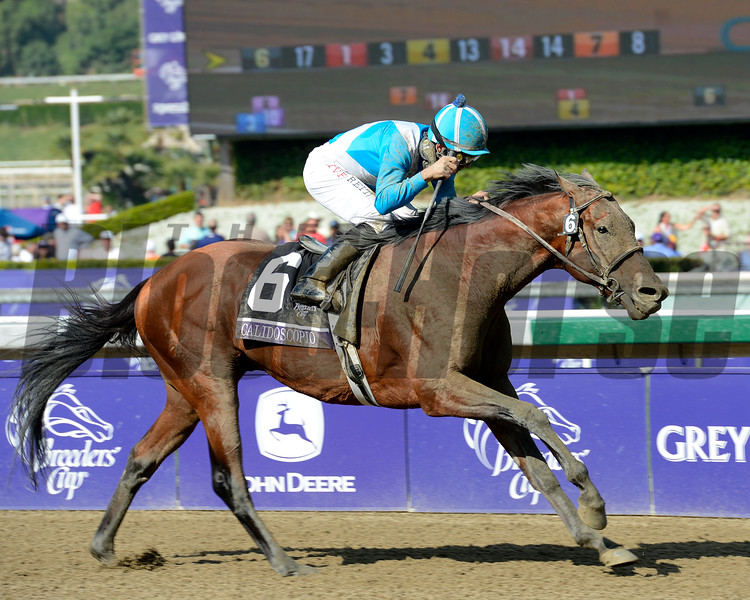 Calidoscopio with Aaron Gryder wins the Breeders' Cup Marathon.<br /> Breeders' Cup races at Santa Anita near Arcadia, California, on Nov. 2, 2012.<br /> BCRACES2012                                          image737<br /> Photo by Anne M. Eberhardt
