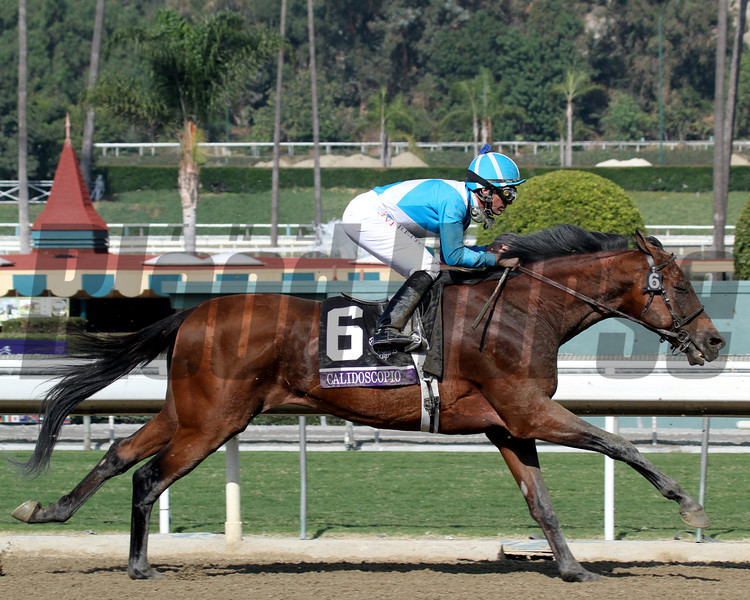 Calidoscopio w/Aaron Gryder up were in last in the early going before passing the field to win the Breeders' Cup Marathon at Santa Anita Park on November 2, 2012.<br /> Photo by Chad Harmon