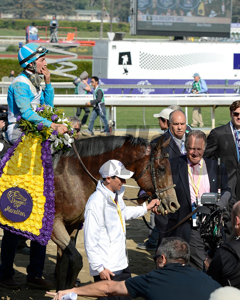 Walkin with principal partner of Stud Dona Pancha<br /> Calidoscopio with Aaron Gryder wins the Breeders' Cup Marathon.<br /> Breeders' Cup races at Santa Anita near Arcadia, California, on Nov. 2, 2012.<br /> BCRACES2012                                          image783<br /> Photo by Anne M. Eberhardt