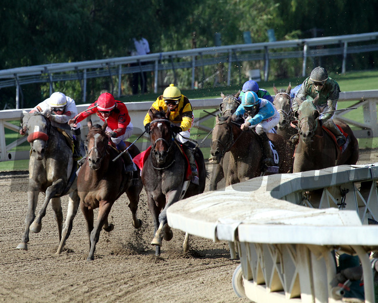 Calidoscopio w/Aaron Gryder up (#6) navigates through the field of the Breeders' Cup Marathon at Santa Anita Park on November 2, 2012.<br /> Photo by Chad Harmon