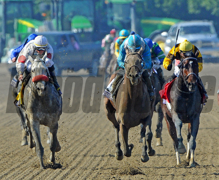 Calidoscopio (center) Aaron Gryder up, wins the Breeders Cup Marathon, defeating Grassy (outside) who finishd second, and third place finisher Atigun...<br /> © 2012 Rick Samuels/The Blood-Horse