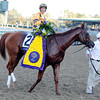 Wise Dan wins the 2012 Breeders' Cup Mile.<br /> Photo by Dave Harmon.