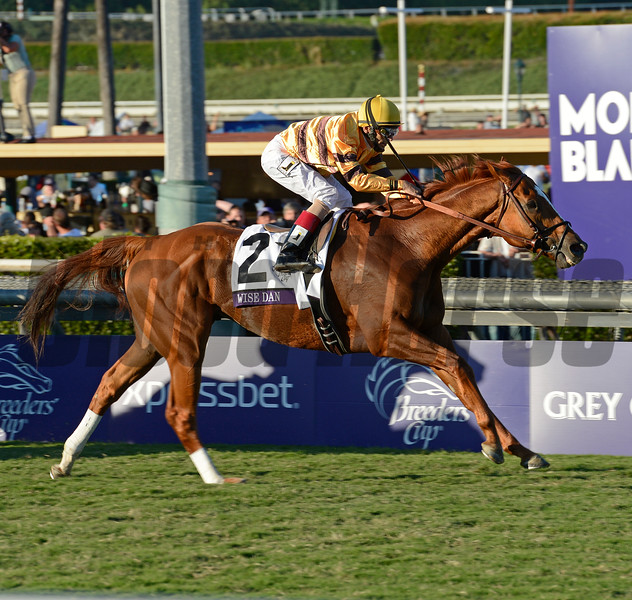 Caption: Wise Dan with John Velazquez wins the Mile.<br /> Breeders' Cup races at Santa Anita near Arcadia, California, on Nov. 3, 2012.<br /> BCRACES2012       Mile  image461<br /> Photo by Anne M. Eberhardt