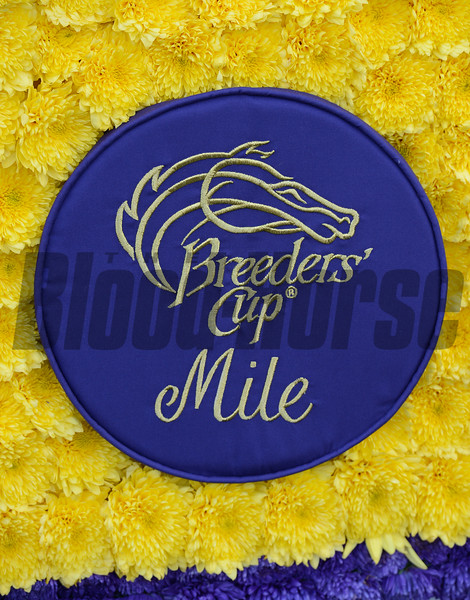 Caption: Trinniberg with Willie Martinez wins the XpressBet Sprint<br /> Breeders' Cup races at Santa Anita near Arcadia, California, on Nov. 3, 2012.<br /> BCRACES2012        Sprint  image324<br /> Photo by Anne M. Eberhardt