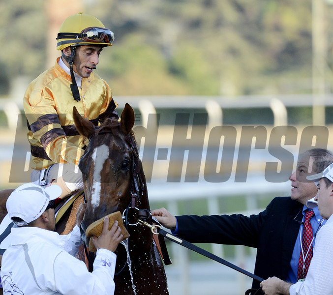 Wise Dan with jockey John Velazquez runs away from the field to win the Breeders' Cup Mile(T) in a course record time at Santa Anita Park in Arcadia, California November 3, 2012.<br /> Photo by Skip Dickstein