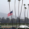 A Breeders' Cup scene from Santa Anita Park on November 2, 2012.