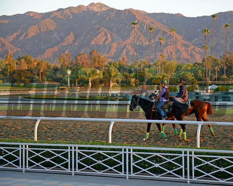 Caption: early morning scene at Santa Anita with the San Gabriel Mountains in background<br /> Breeders' Cup morning works at Santa Anita near Arcadia, California, on Oct. 28, 2012.<br /> BCRACES2012 WorksSunday1 image396<br /> Photo by Anne M. Eberhardt