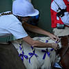 Caption: adjusting bows on her pony<br /> Breeders' Cup races at Santa Anita near Arcadia, California, on Nov. 3, 2012.<br /> BCRACES2012         JUVTurf   image<br /> Photo by Anne M. Eberhardt