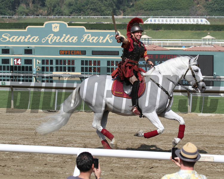 USC Mascot Traveler makes an appearance for the Breeders' Cup at Santa Anita Park on November 2, 2012.