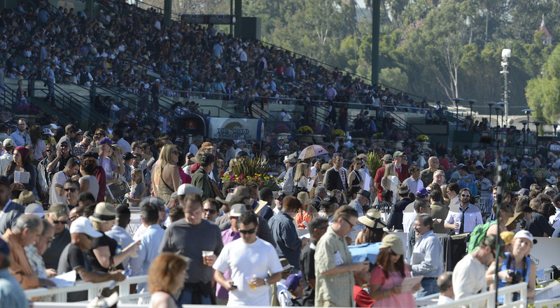 Breeders' Cup day at Santa Anita November 3, 2012.  Photo by Skip Dickstein