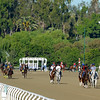 Caption: training scene at Santa Anita<br /> Breeders' Cup morning works at Santa Anita near Arcadia, California, on Oct. 29, 2012.<br /> BCRACES2012 WorksMonday1 image497<br /> Photo by Anne M. Eberhardt