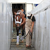 Mucho Macho Man is the final New York horse, stranded by Hurricane Sandy, to be loaded on the Tex Sutton plane heading to California for the Breeders Cup...<br /> © 2012 Rick Samuels/ The Blood-Horse