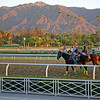 Caption: early morning scene at Santa Anita with the San Gabriel Mountains in background<br /> Breeders' Cup morning works at Santa Anita near Arcadia, California, on Oct. 28, 2012.<br /> BCRACES2012 WorksSunday1 image396<br /> Photo by Anne M. Eberhardt.
