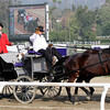The Bugler arrives at Santa Anita Park on November 2, 2012 for Breeders' Cup.