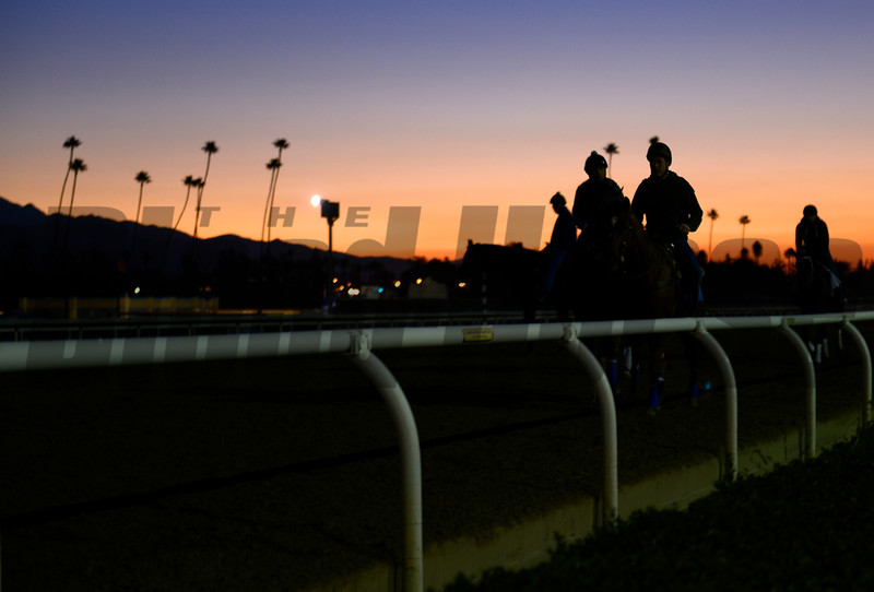 Caption: morning sunrise at Santa Anita<br /> Breeders' Cup morning works at Santa Anita near Arcadia, California, on Oct. 30, 2012.<br /> BCRACES2012 WorksTues1 image436<br /> Photo by Anne M. Eberhardt
