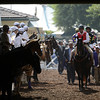 Santa Anita Park in Arcadia, California November 2, 2012.  Photo by Skip Dickstein
