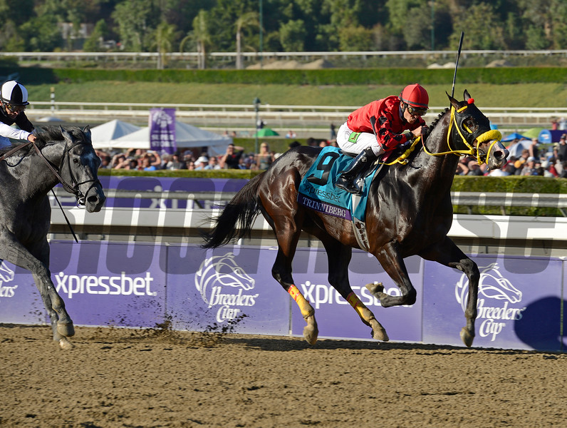 Caption: Trinniberg with Willie Martinez wins the XpressBet Sprint. The Lumber Guy in second<br /> Breeders' Cup races at Santa Anita near Arcadia, California, on Nov. 3, 2012.<br /> BCRACES2012        Sprint  image345<br /> Photo by Anne M. Eberhardt