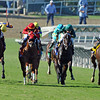 Mizdirection, (second from left) Mike Smith up, wins the Breeders Cup Turf Sprint...<br />  © 2012 Rick Samuels/The Blood-Horse
