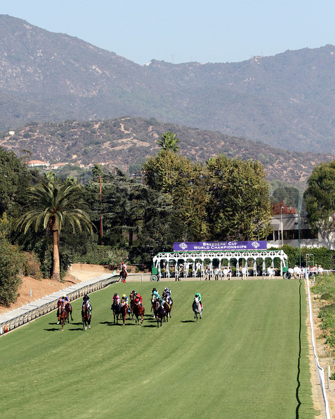The field comes down the hill at the start of the Breeders' Cup Turf Sprint at Santa Anita Park on November 3, 2012.<br /> Photo by Chad Harmon