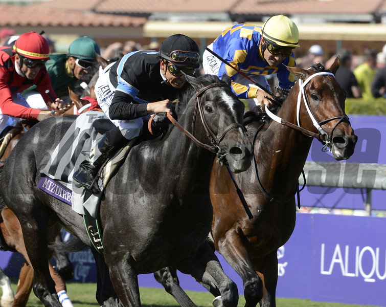 Mizdirection wins the BC turf Sprint.  <br /> Photo by Skip Dickstein