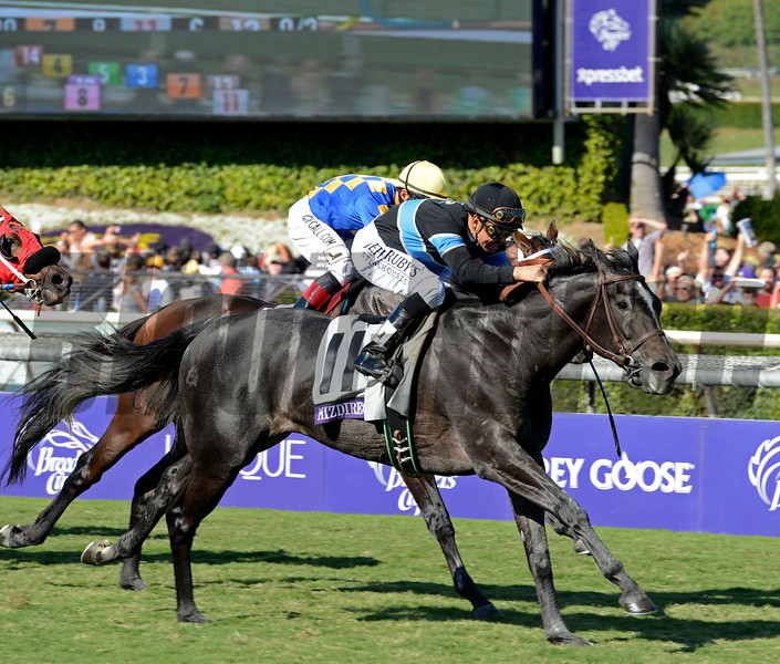 Caption: Mizdirection with Mike Smith wins the Turf Sprint.<br /> Breeders' Cup races at Santa Anita near Arcadia, California, on Nov. 3, 2012.<br /> BCRACES2012         TurfSprint   image944<br /> Photo by Anne M. Eberhardt