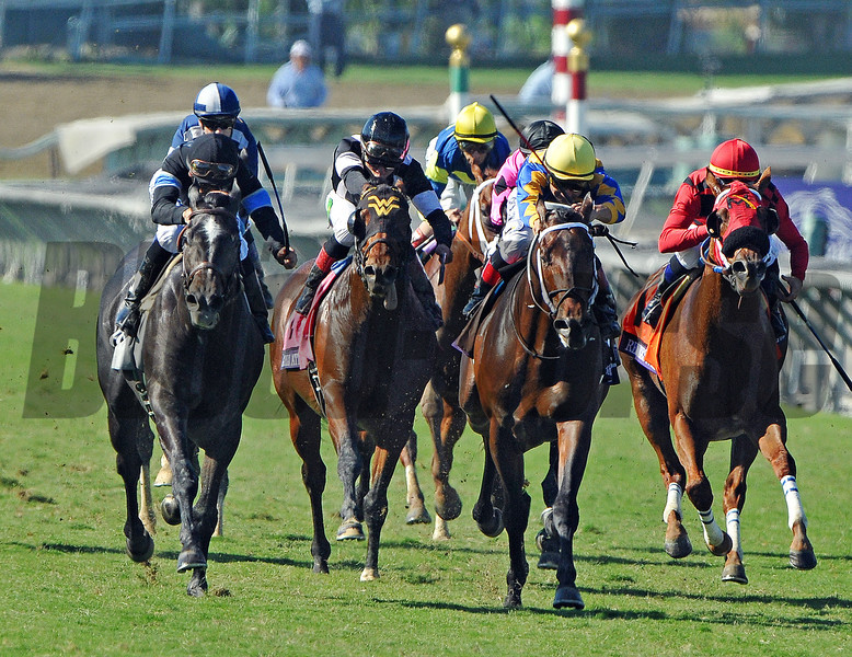 Mizdirection, Mike Smith up, wins the Breeders Cup Turf Sprint...<br />  © 2012 Rick Samuels/The Blood-Horse