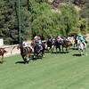 The field for the Breeders' Cup Turf Sprint head down the hill at Santa Anita Park on November 3, 2012.<br /> Photo by Chad Harmon