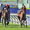 Little Mike, Ramon Dominguez up, wins the Gr1 Breeders Cup Turf...<br /> © 2012 Rick Samuels/The Blood-Horse