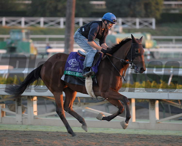 Caption: Beholder<br /> Breeders' Cup morning works at Santa Anita near Arcadia, California, on Oct. 29, 2012.<br /> BCRACES2012 WorksMonday1 image111<br /> Photo by Anne M. Eberhardt
