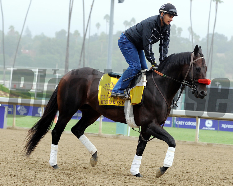 Richard's Kid<br /> Breeders' Cup morning works at Santa Anita near Arcadia, California, on Nov 1, 2012.<br /> Photo by Dave Harmon