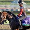 Caption: Almost an Angel<br /> Breeders' Cup morning works at Santa Anita near Arcadia, California, on Oct. 29, 2012.<br /> BCRACES2012 WorksMonday1 image312<br /> Photo by Anne M. Eberhardt