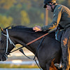 Caption: Gabriel Charles<br /> Breeders' Cup morning works at Santa Anita near Arcadia, California, on Oct. 29, 2012.<br /> BCRACES2012 WorksMonday1 image140<br /> Photo by Anne M. Eberhardt