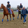 Caption: Fantastic Moon<br /> Breeders' Cup morning works at Santa Anita near Arcadia, California, on Oct. 31, 2012.<br /> BCRACES2012 WorksThurs1 image664<br /> Photo by Anne M. Eberhardt